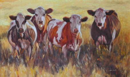 e851e-sunset-cows