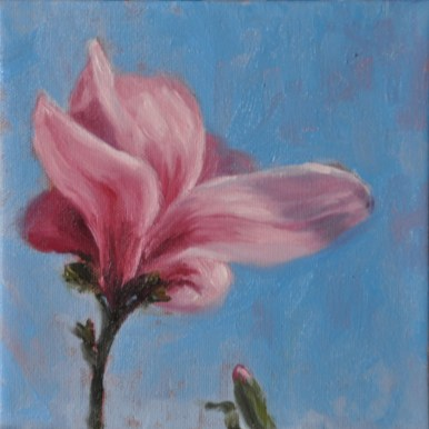 0e79a-magnolia