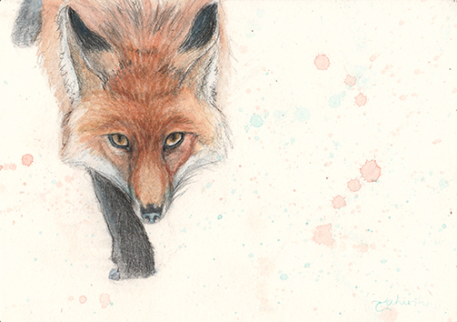 The Rogue ~ red fox watercolor painting