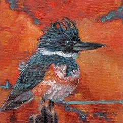 kingfisher-alkyone-small